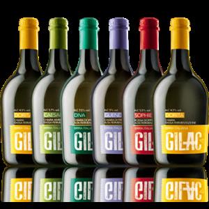 Degustazione Birrificio Gilac - Gilac - Birra Italia
