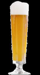 bicchiere-pils-birra