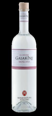 Grappa Maschio Gaiarine moscato 70cl - Distilleria Bonaventura Maschio - Grappa Italia