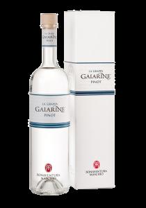 Grappa Maschio Gaiarine pinot 70cl - Distilleria Bonaventura Maschio - Grappa Italia