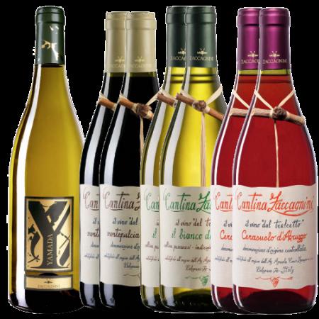 Offerta Vini Abruzzesi Cantina Ciccio Zaccagnini - Azienda Agricola Ciccio Zaccagnini - Vino Abruzzo
