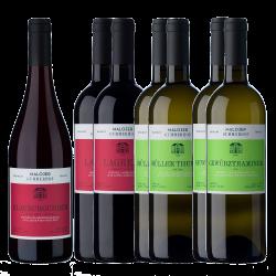 Offerta Vino Trentino Cantina Alfred Malojer - Alfred Malojer - Vino Trentino Alto Adige