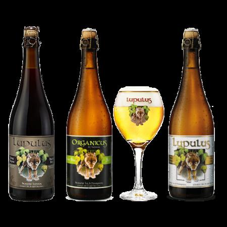 Pacchetto Birra Lupulus - Brasserie les 3 Fourquetes - Birra Belgio